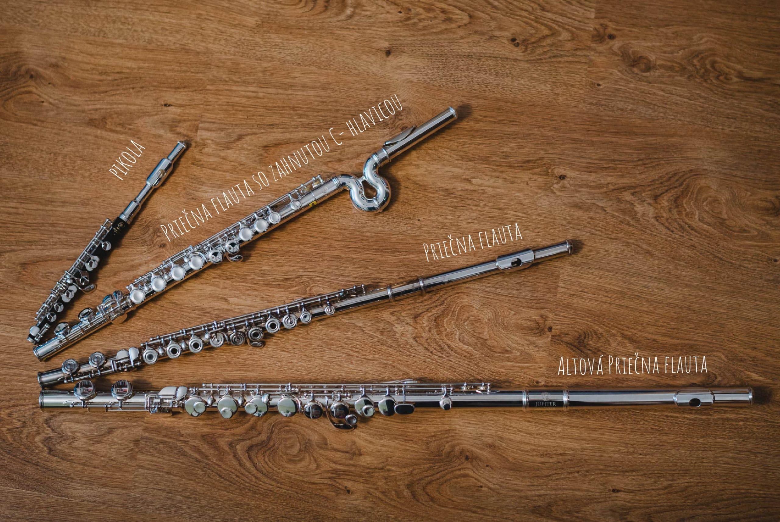 ZUŠ Dubnica nad Váhom, priečne flauty